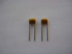 (2) 22pF capacitors